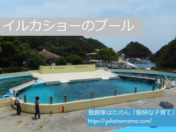 クジラの博物館にてクジラショーが行われるプール