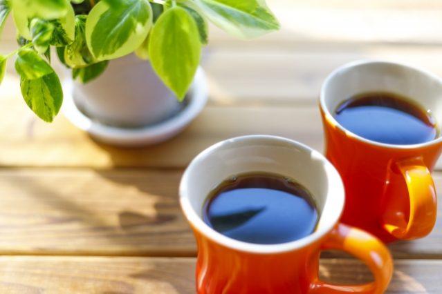 ふたつ並んだコーヒー