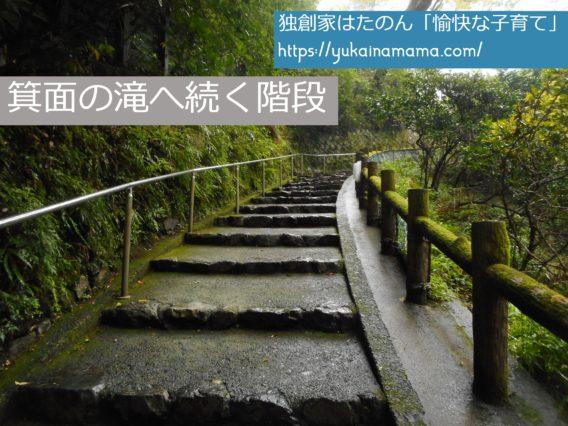 低めの階段が続く箕面の滝へ向かう道
