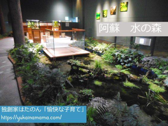 中央に池がある阿蘇山の水辺をイメージした展示