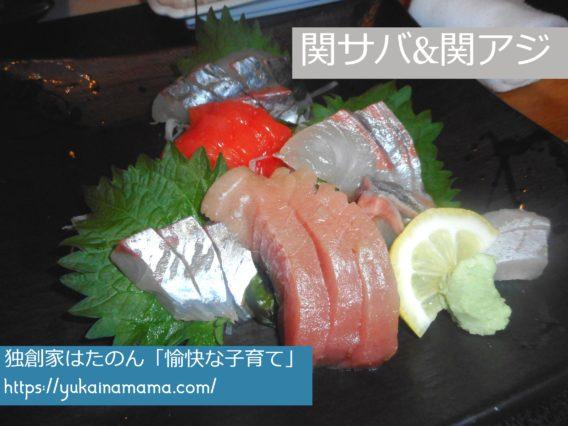 関サバと関アジを含む6種類のお刺身