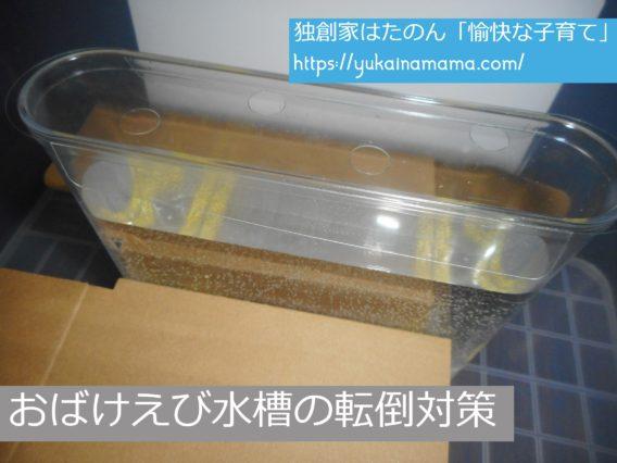 転倒を防止するためおもちゃ箱と段ボールで作ったおばけえび(シーモンキー)水槽