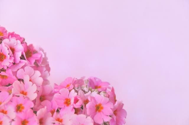 ピンクの花で作られたハート