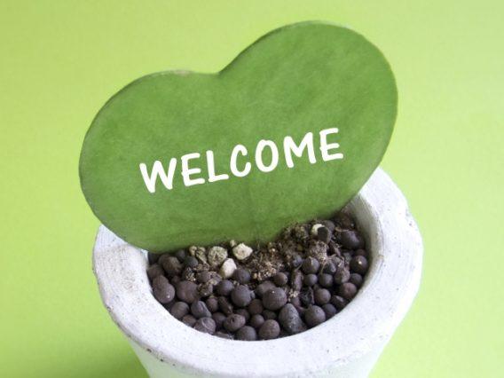 「welcome」と描かれたハート型のサボテン