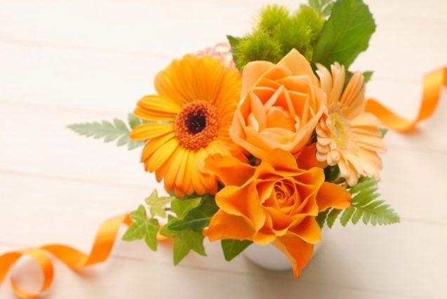 ビタミンカラーであるオレンジ系統のお花たち