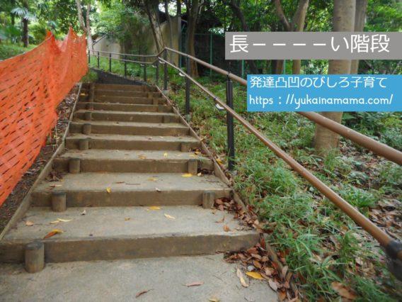 港区立高輪森の公園にある長い階段