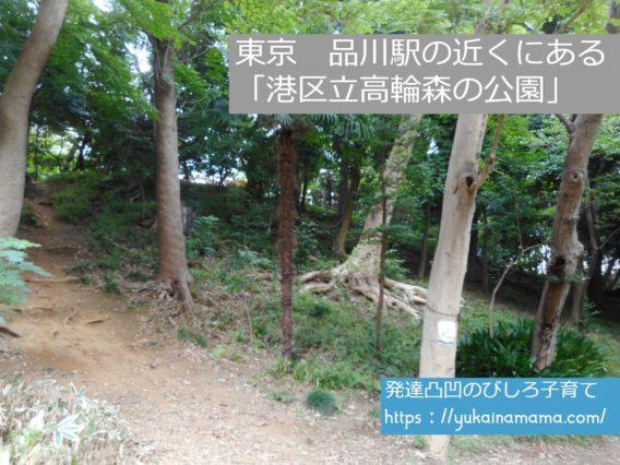 東京の品川駅の近くにある「港区立高輪森の公園」は森のよう