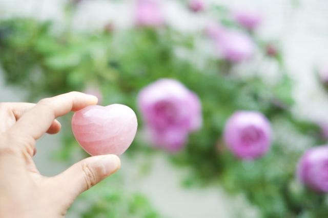 ピンクの石とバラ