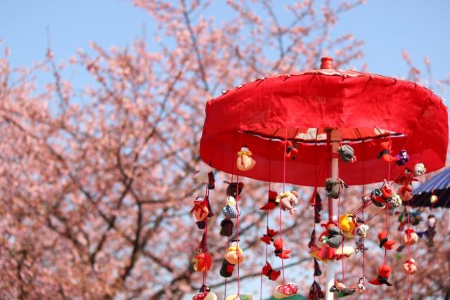 さるぼぼの吊るし雛と桜